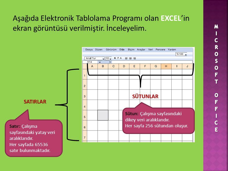 Aşağıda Elektronik Tablolama Programı olan EXCEL'in ekran görüntüsü verilmiştir. İnceleyelim.