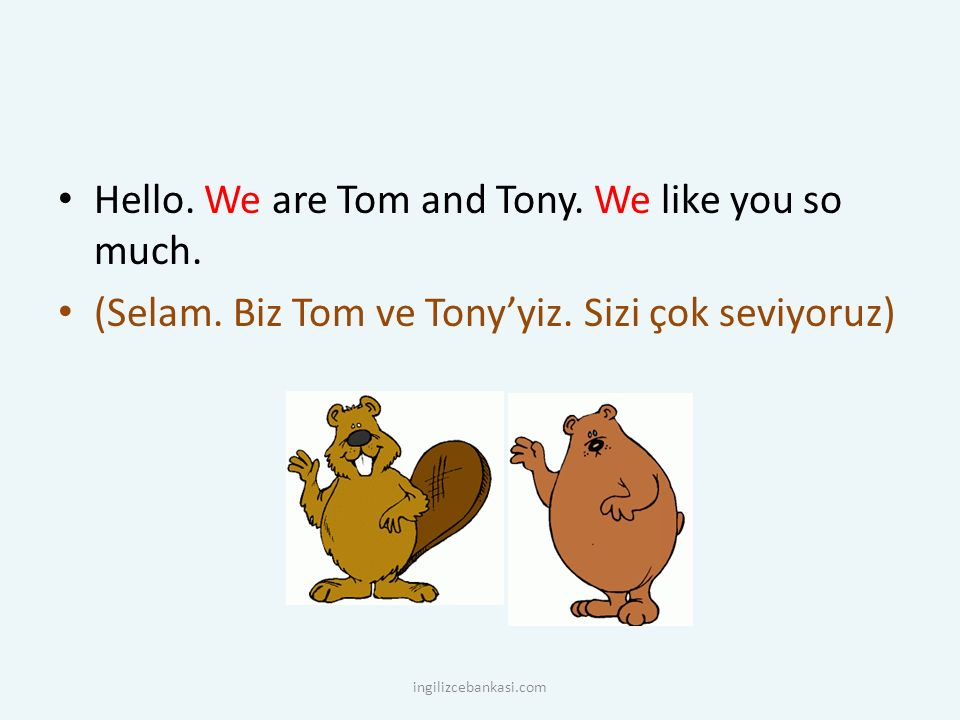 Hello. We are Tom and Tony. We like you so much.