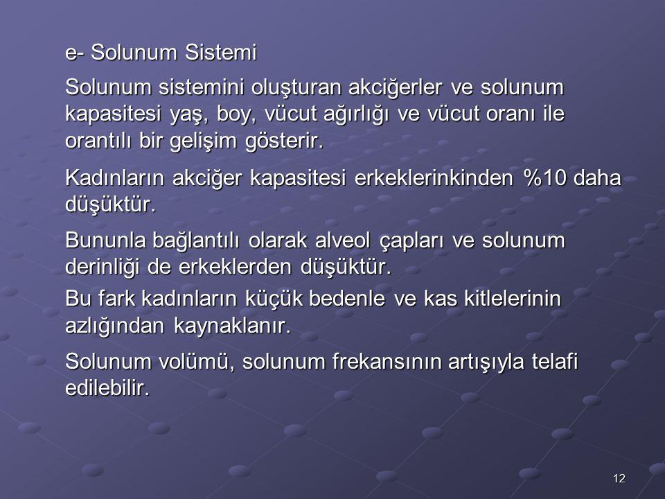 e- Solunum Sistemi