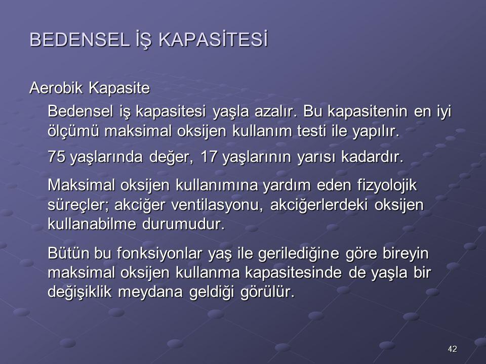 BEDENSEL İŞ KAPASİTESİ