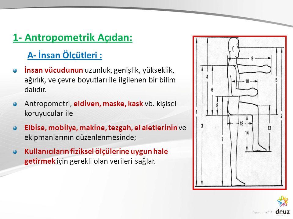 1- Antropometrik Açıdan: