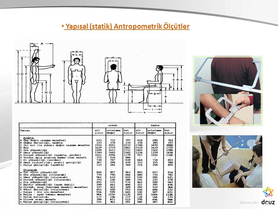 Yapısal (statik) Antropometrik Ölçütler