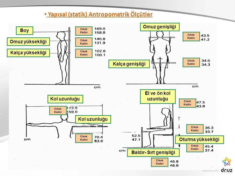 Yapısal (statik) Antropometrik Ölçütler Baldır- Sırt genişliği