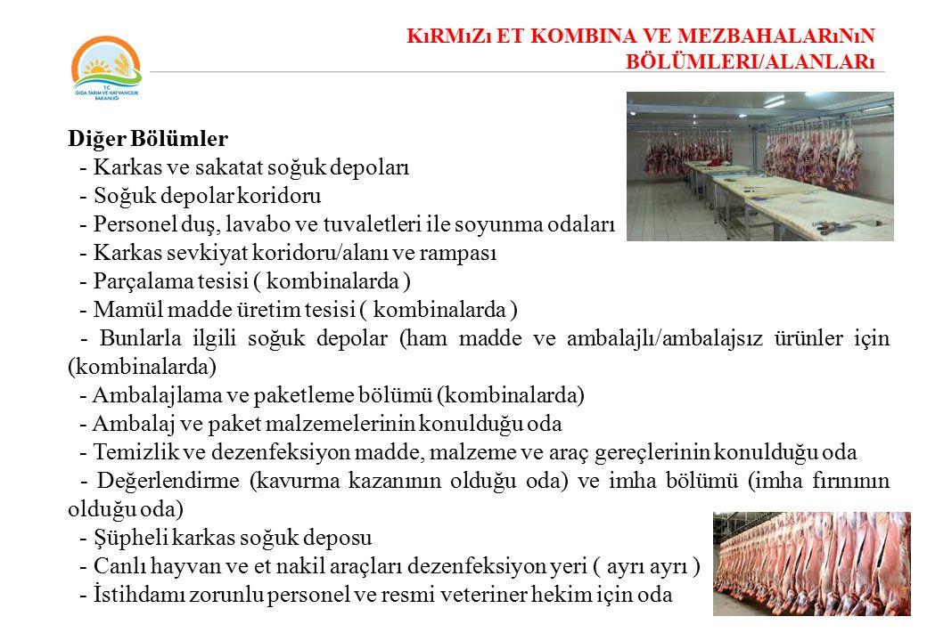 KIRMIZI ET KOMBİNA VE MEZBAHALARININ BÖLÜMLERİ/ALANLARI