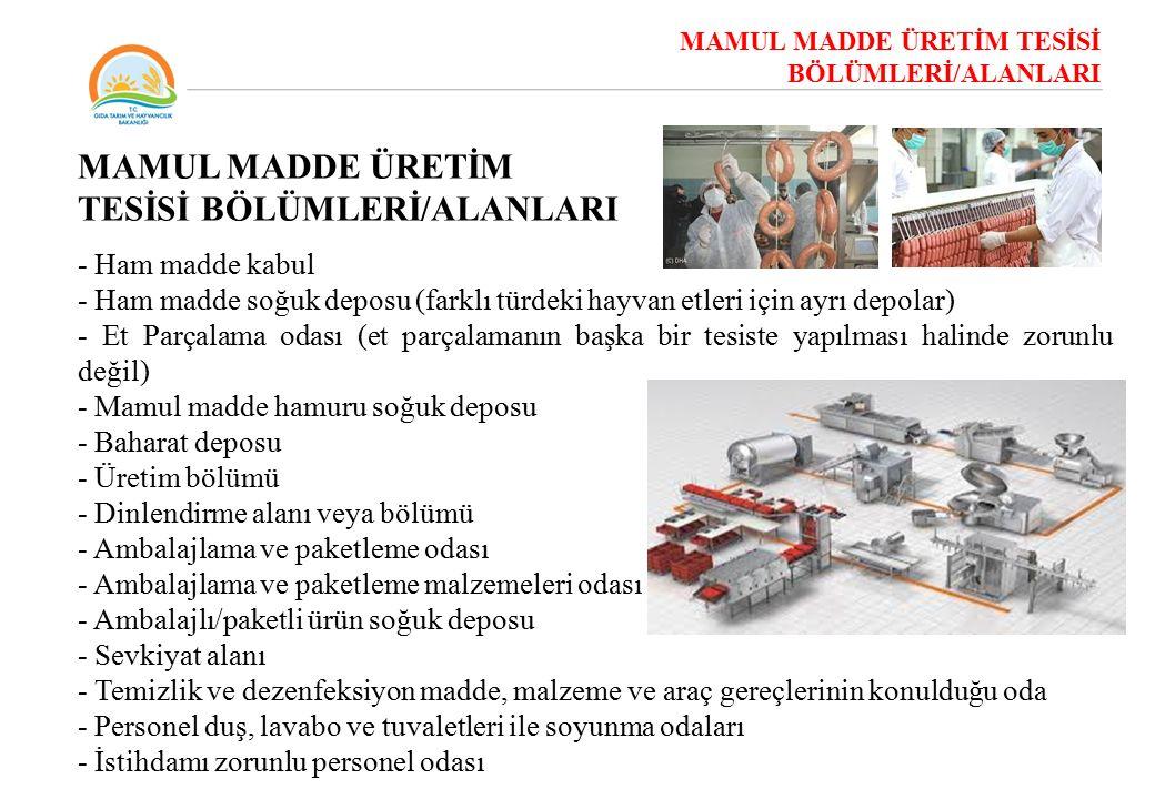 MAMUL MADDE ÜRETİM TESİSİ BÖLÜMLERİ/ALANLARI