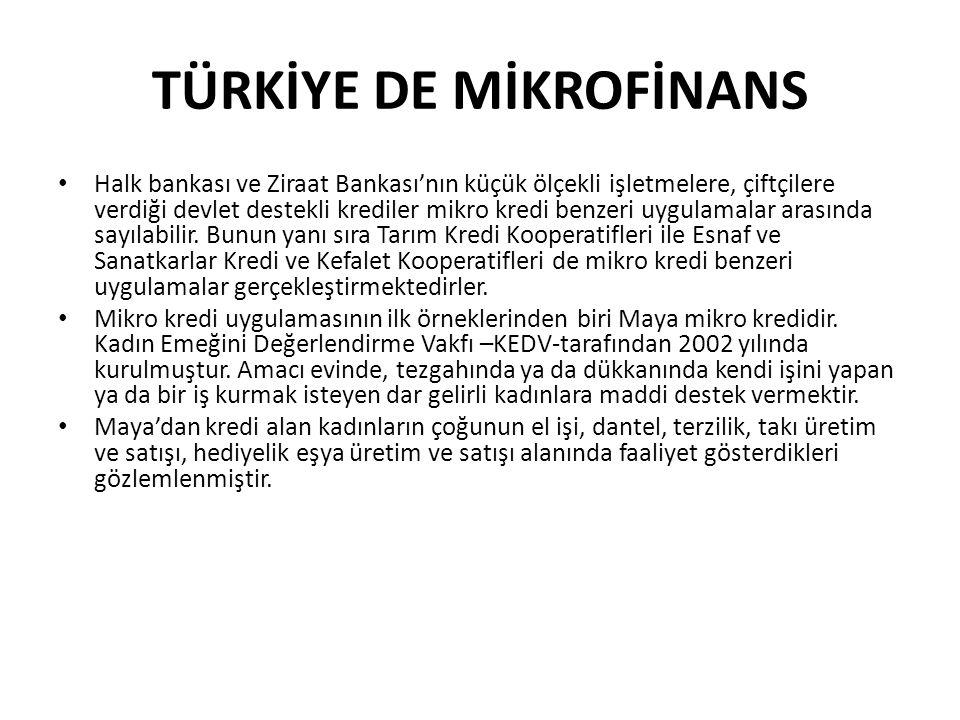 TÜRKİYE DE MİKROFİNANS