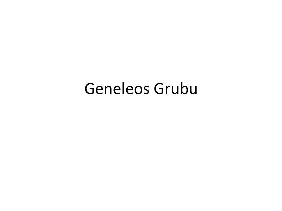 Geneleos Grubu