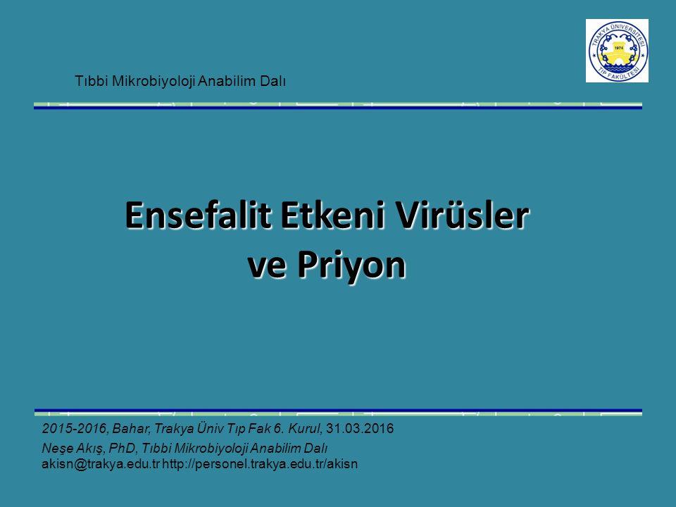 Ensefalit Etkeni Virüsler ve Priyon