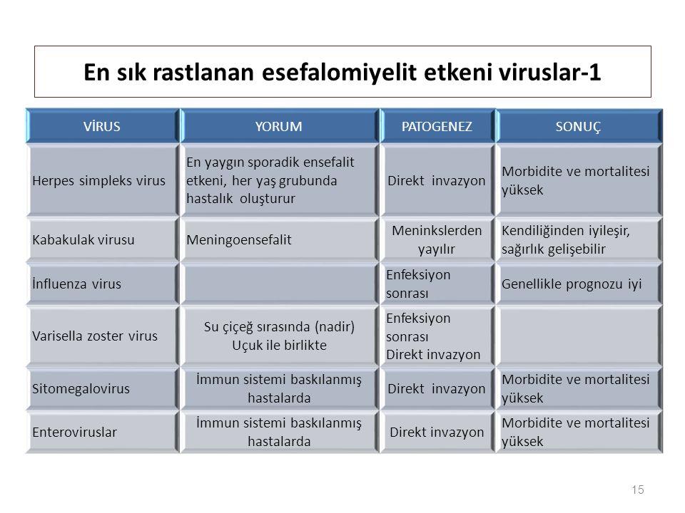 En sık rastlanan esefalomiyelit etkeni viruslar-1