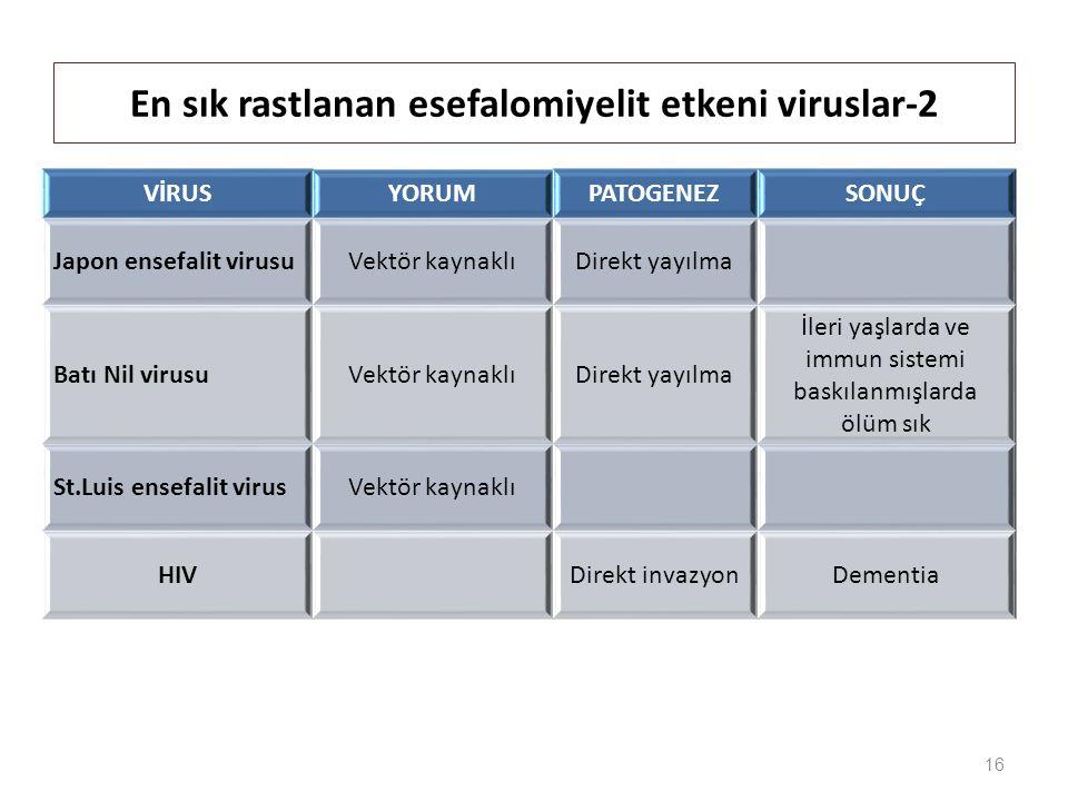 En sık rastlanan esefalomiyelit etkeni viruslar-2