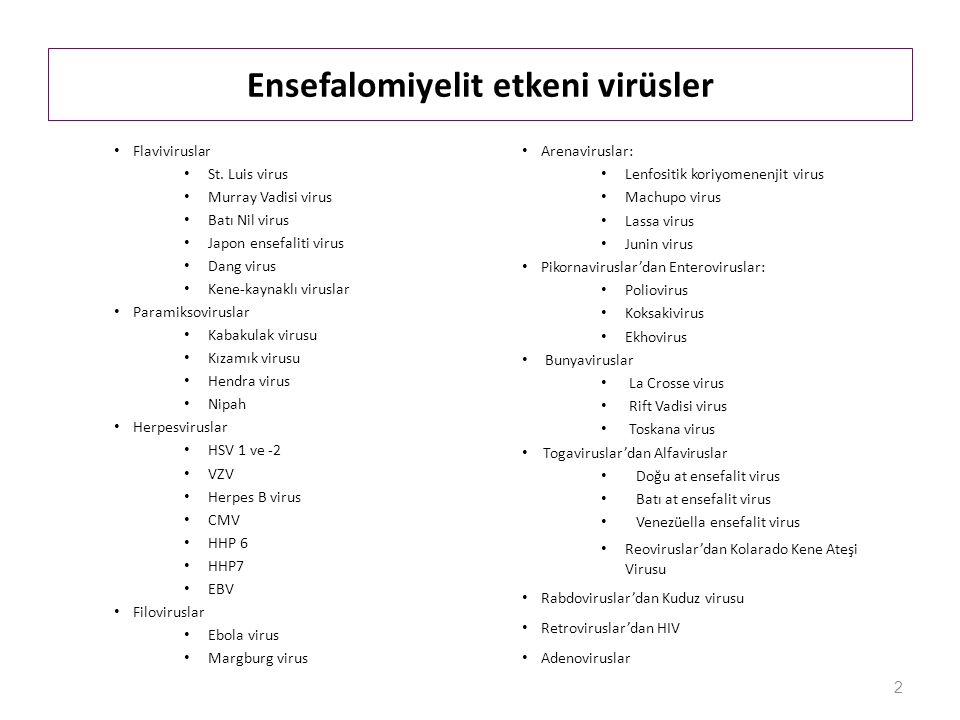 Ensefalomiyelit etkeni virüsler