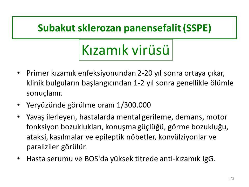 Subakut sklerozan panensefalit (SSPE)