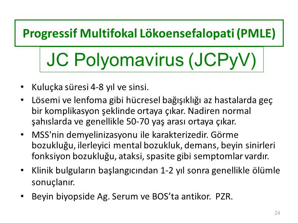 Progressif Multifokal Lökoensefalopati (PMLE)