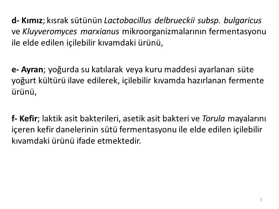 d- Kımız; kısrak sütünün Lactobacillus delbrueckii subsp