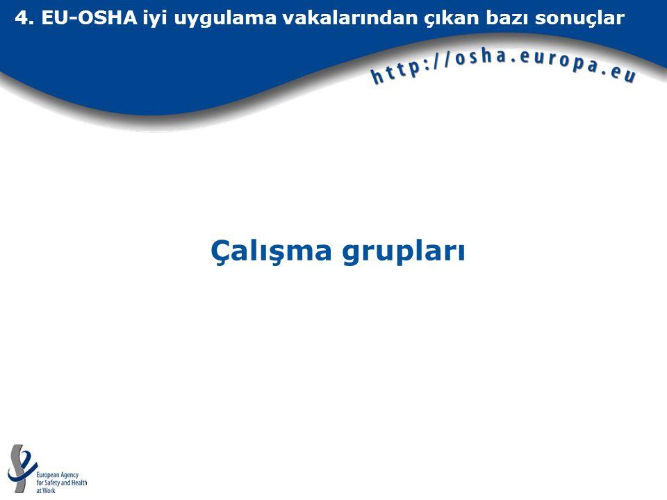 4. EU-OSHA iyi uygulama vakalarından çıkan bazı sonuçlar