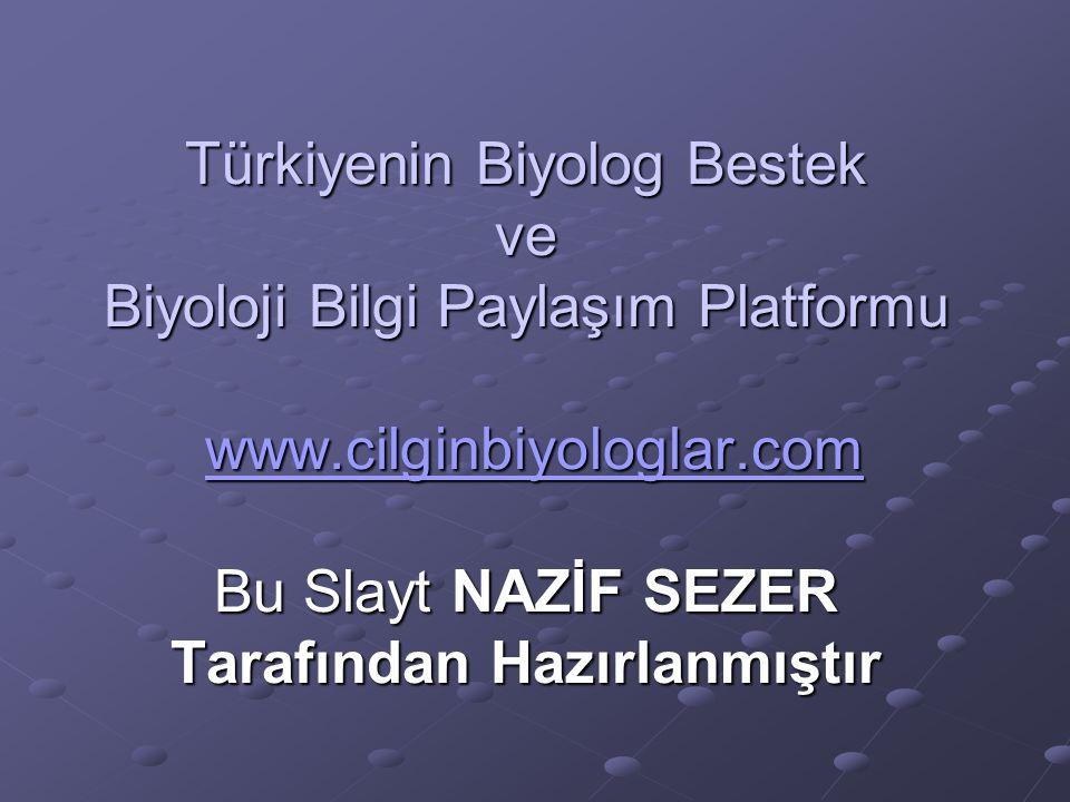 Türkiyenin Biyolog Bestek ve Biyoloji Bilgi Paylaşım Platformu www