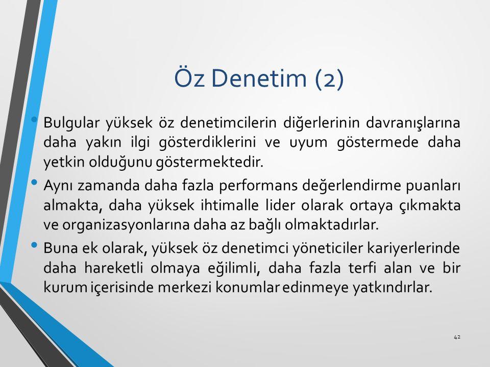 Öz Denetim (2)