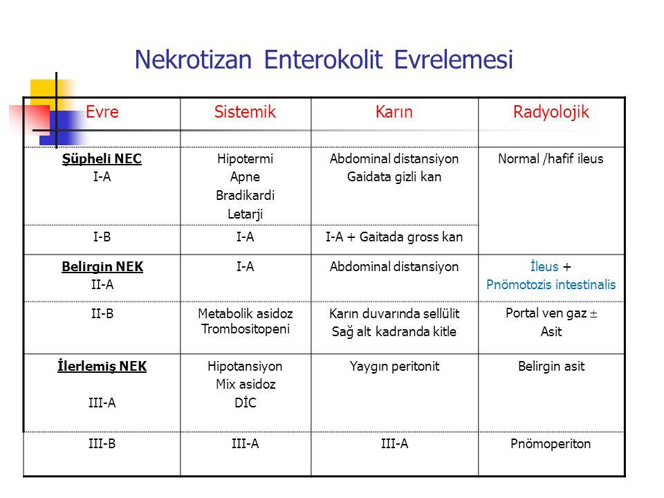 Nekrotizan Enterokolit Evrelemesi