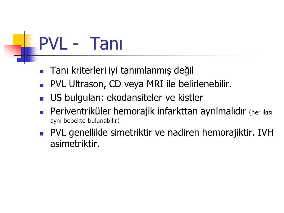 PVL - Tanı Tanı kriterleri iyi tanımlanmış değil
