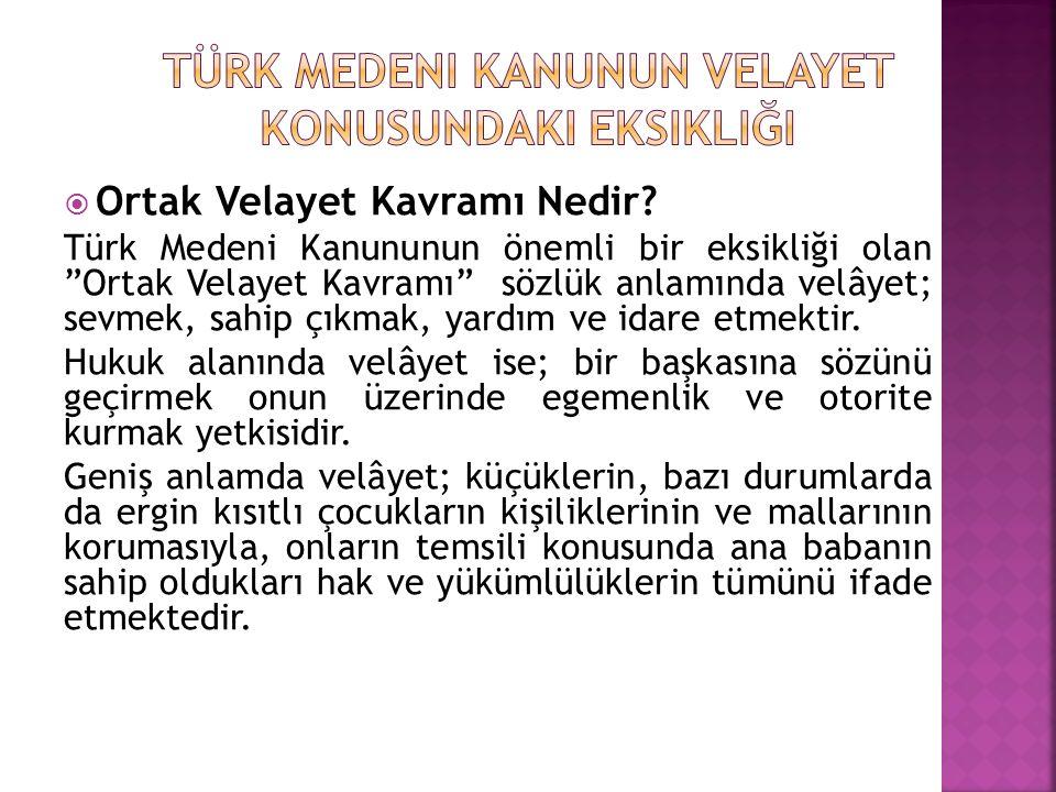 Türk Medeni Kanunun Velayet Konusundaki Eksikliği