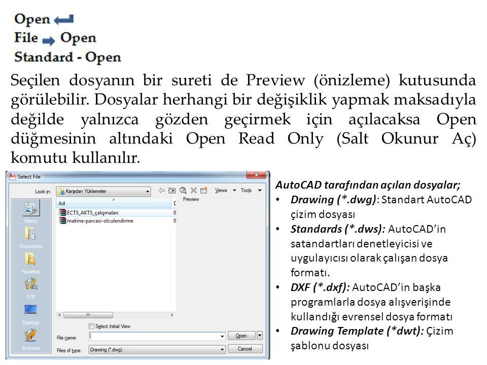 Seçilen dosyanın bir sureti de Preview (önizleme) kutusunda görülebilir. Dosyalar herhangi bir değişiklik yapmak maksadıyla değilde yalnızca gözden geçirmek için açılacaksa Open düğmesinin altındaki Open Read Only (Salt Okunur Aç) komutu kullanılır.