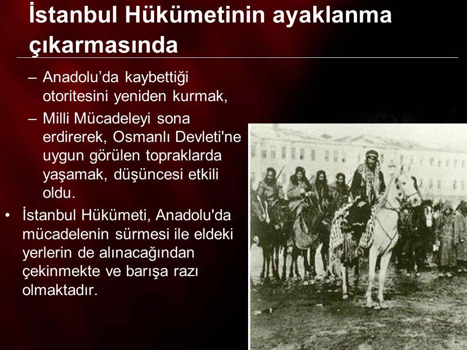 İstanbul Hükümetinin ayaklanma çıkarmasında