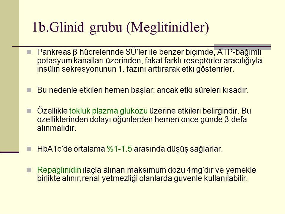 1b.Glinid grubu (Meglitinidler)