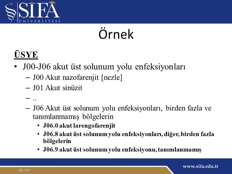 Örnek ÜSYE J00-J06 akut üst solunum yolu enfeksiyonları