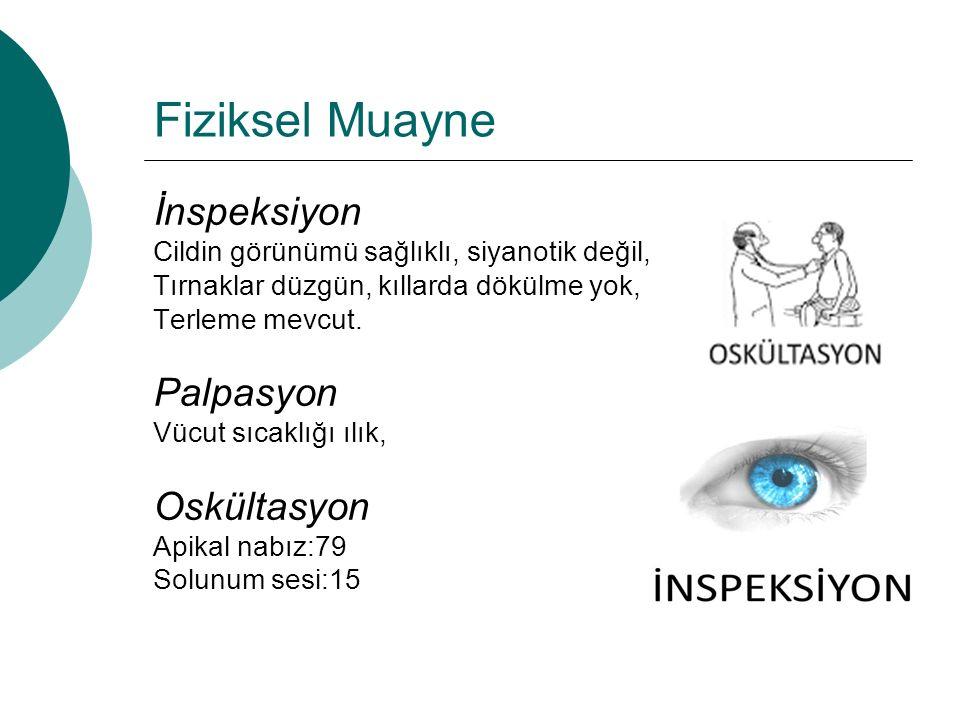 Fiziksel Muayne İnspeksiyon Palpasyon Oskültasyon