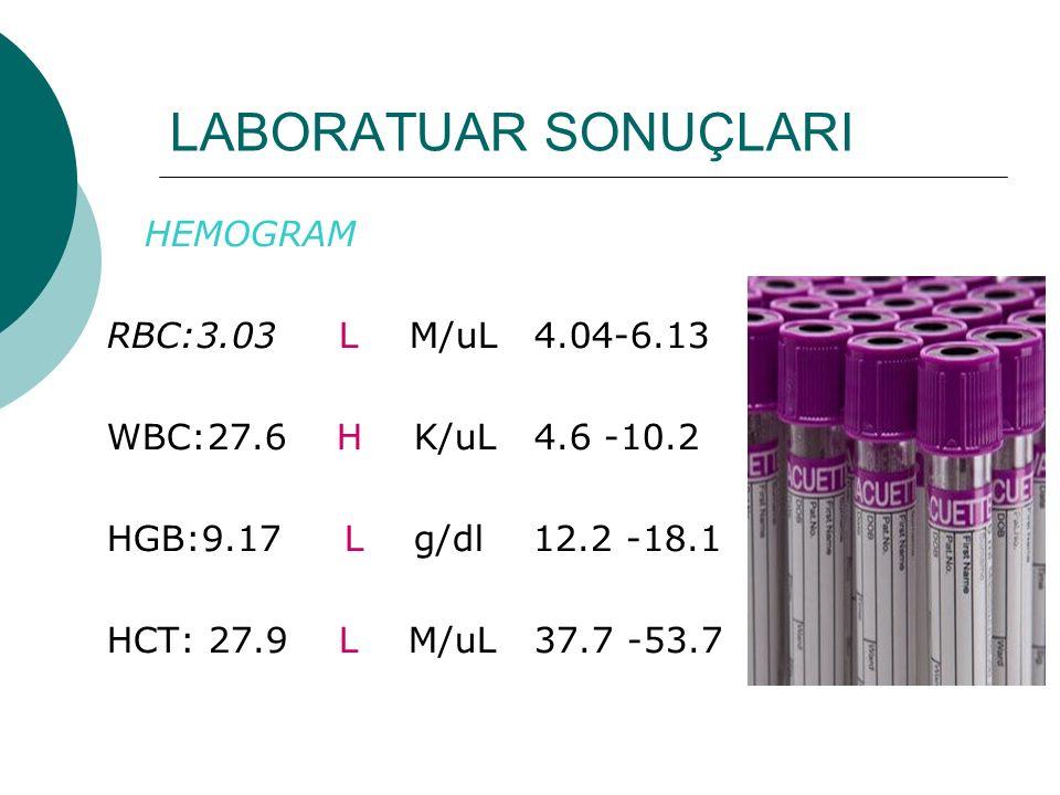 LABORATUAR SONUÇLARI HEMOGRAM RBC:3.03 L M/uL 4.04-6.13