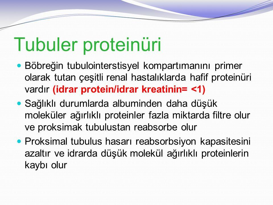 Tubuler proteinüri