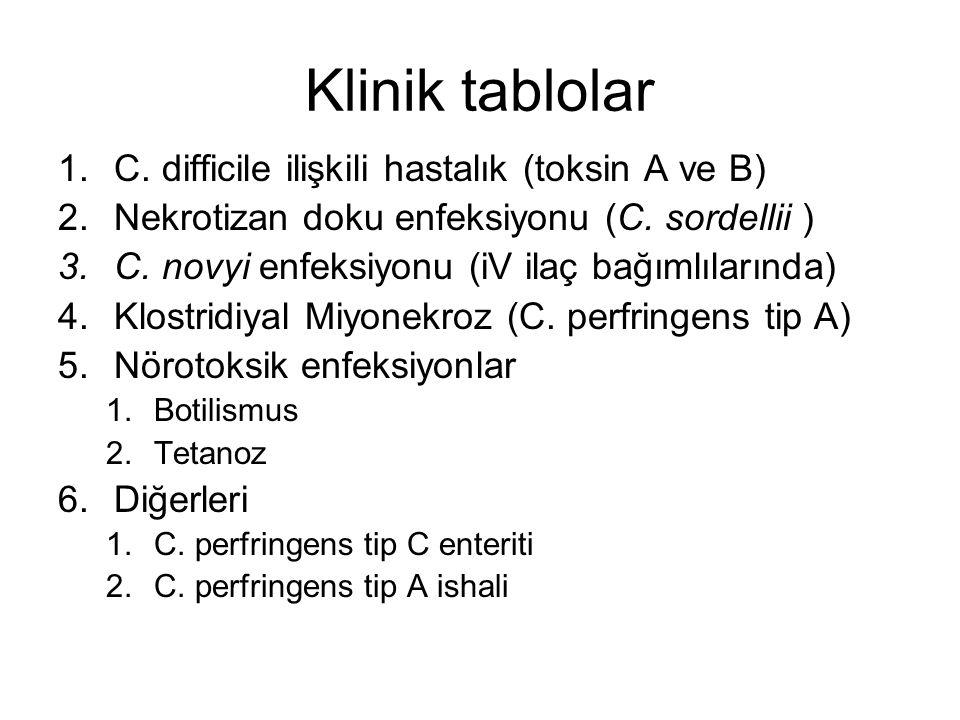 Klinik tablolar C. difficile ilişkili hastalık (toksin A ve B)