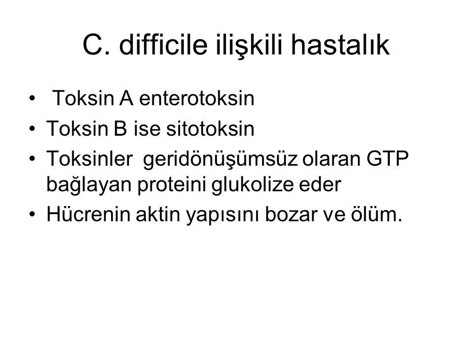 C. difficile ilişkili hastalık