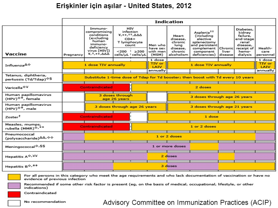 Erişkinler için aşılar - United States, 2012
