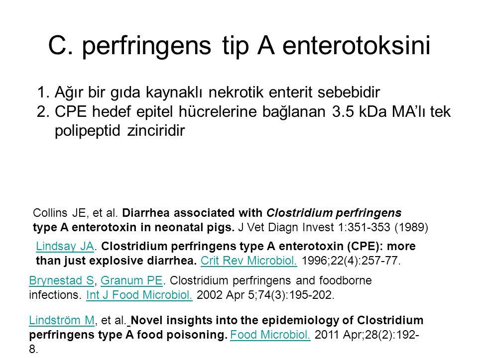 C. perfringens tip A enterotoksini