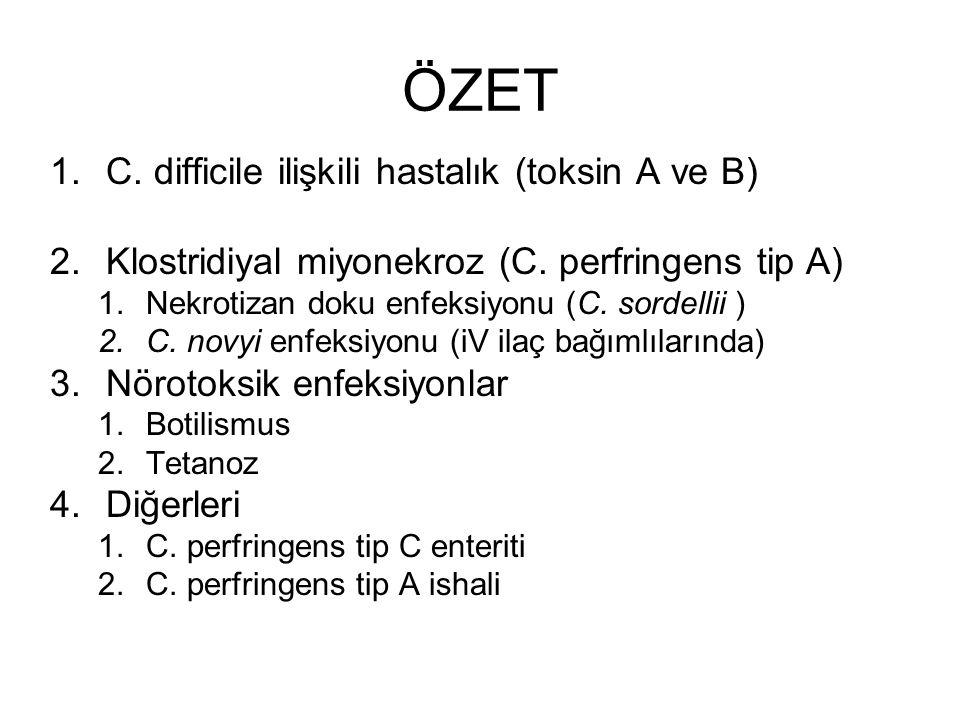 ÖZET C. difficile ilişkili hastalık (toksin A ve B)