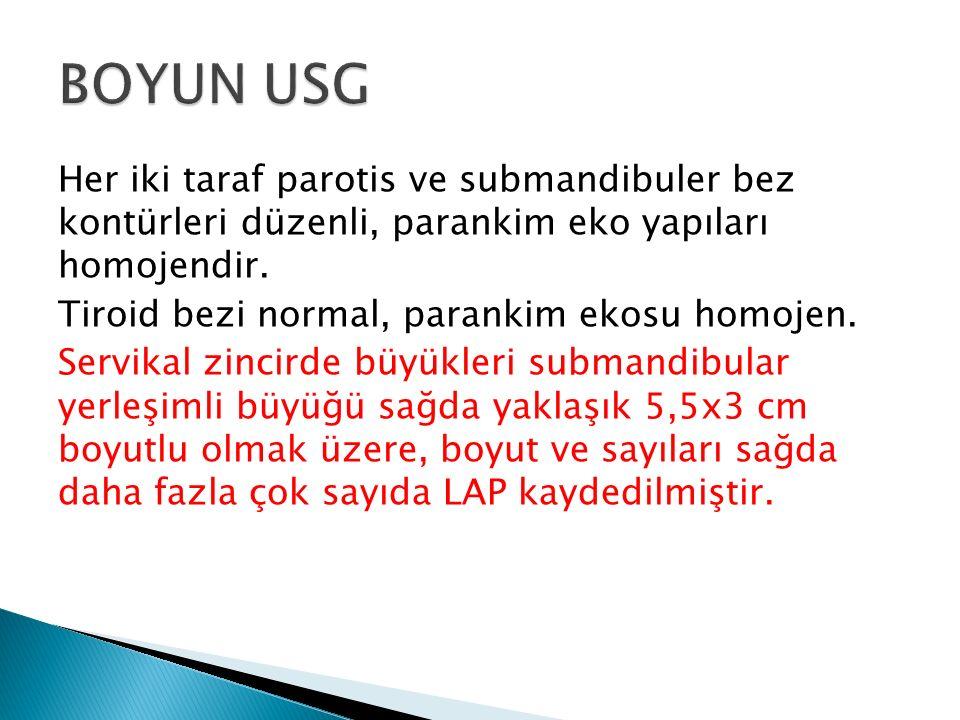 BOYUN USG