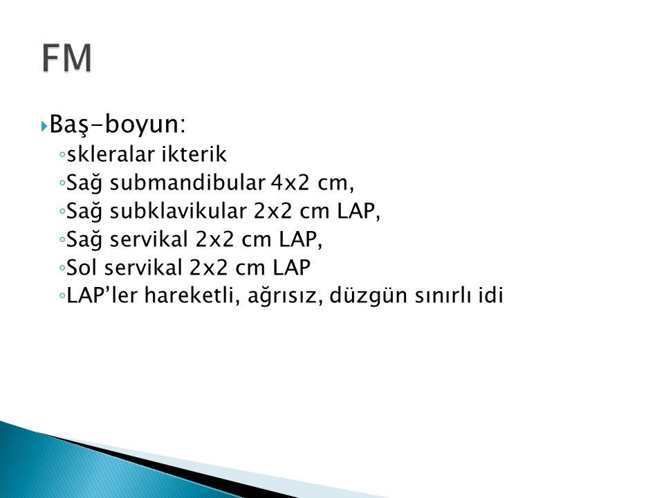FM Baş-boyun: skleralar ikterik Sağ submandibular 4x2 cm,