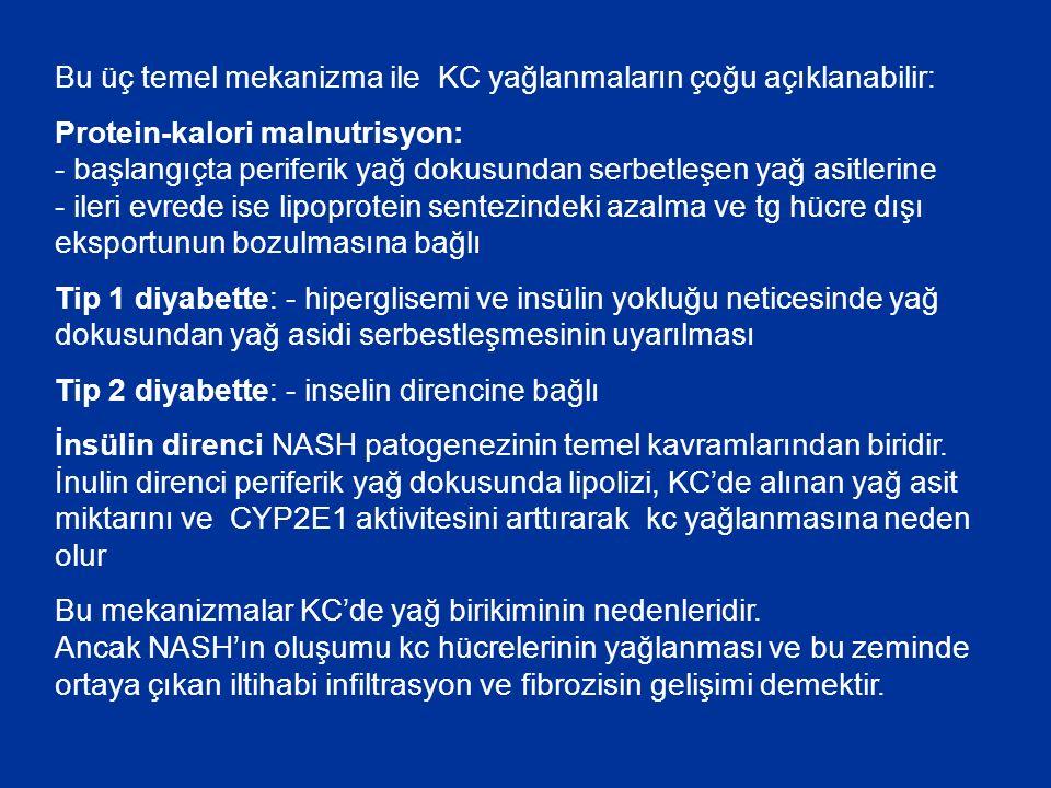 Bu üç temel mekanizma ile KC yağlanmaların çoğu açıklanabilir: