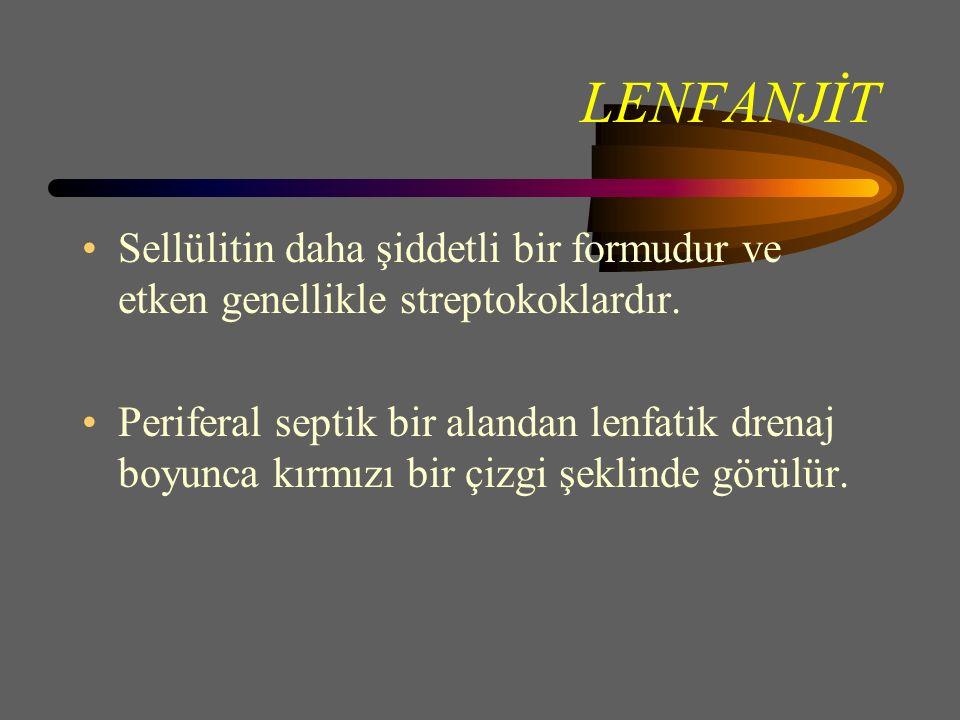 LENFANJİT Sellülitin daha şiddetli bir formudur ve etken genellikle streptokoklardır.