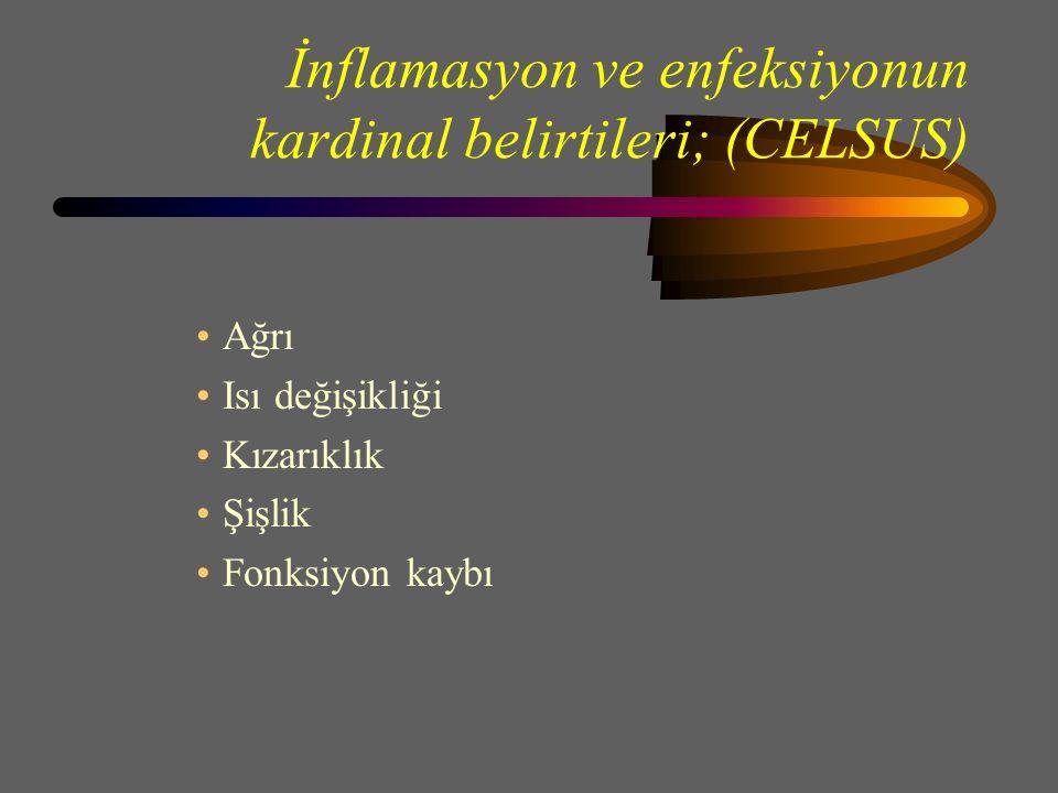 İnflamasyon ve enfeksiyonun kardinal belirtileri; (CELSUS)