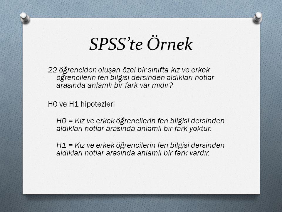 SPSS'te Örnek