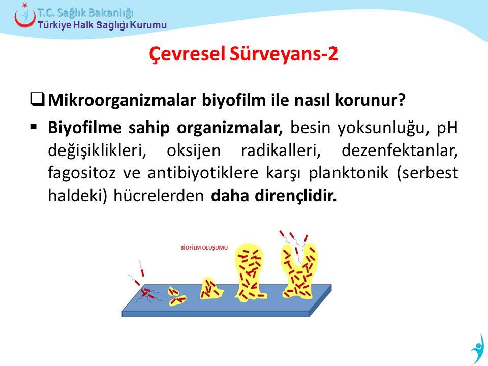 Çevresel Sürveyans-2 Mikroorganizmalar biyofilm ile nasıl korunur