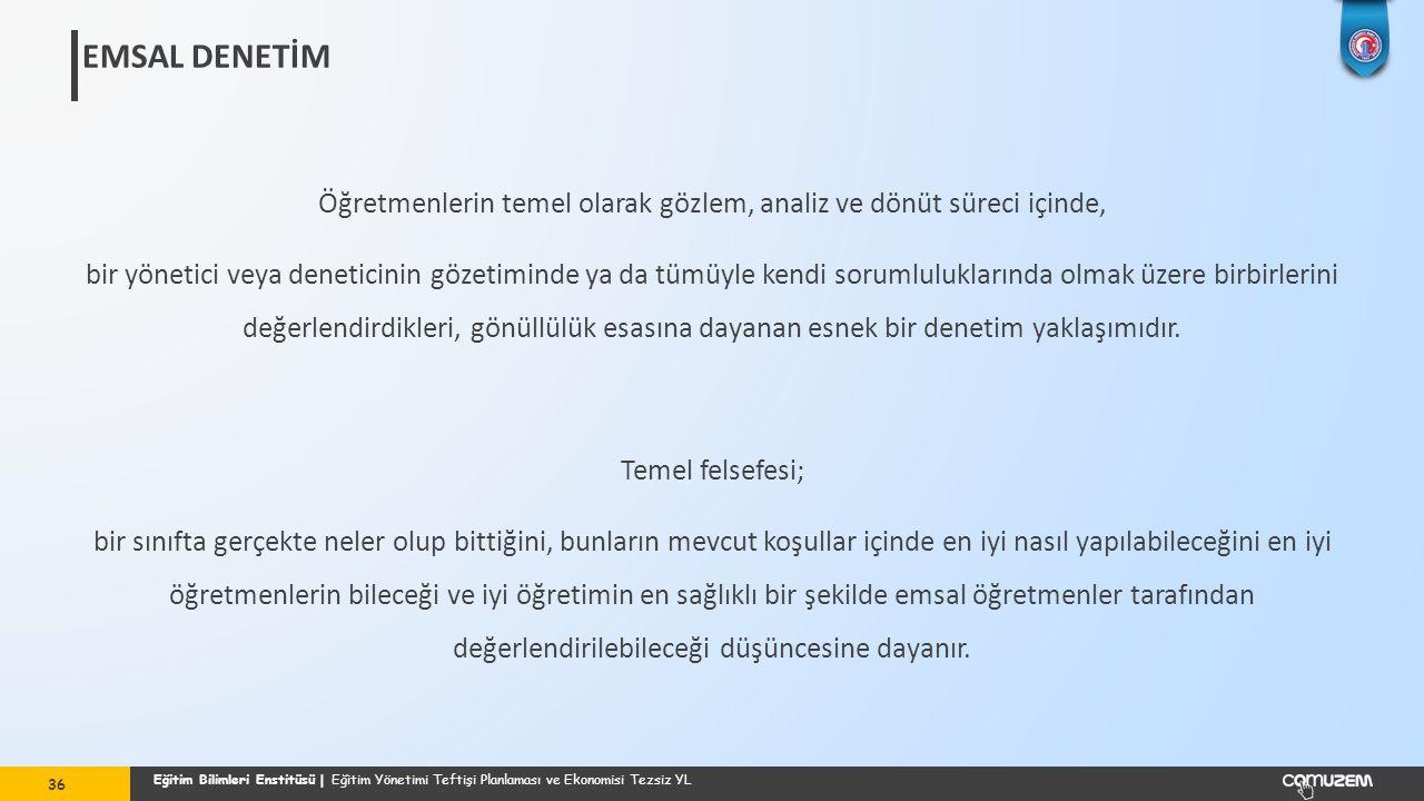 EMSAL DENETİM