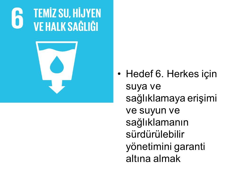 Hedef 6.