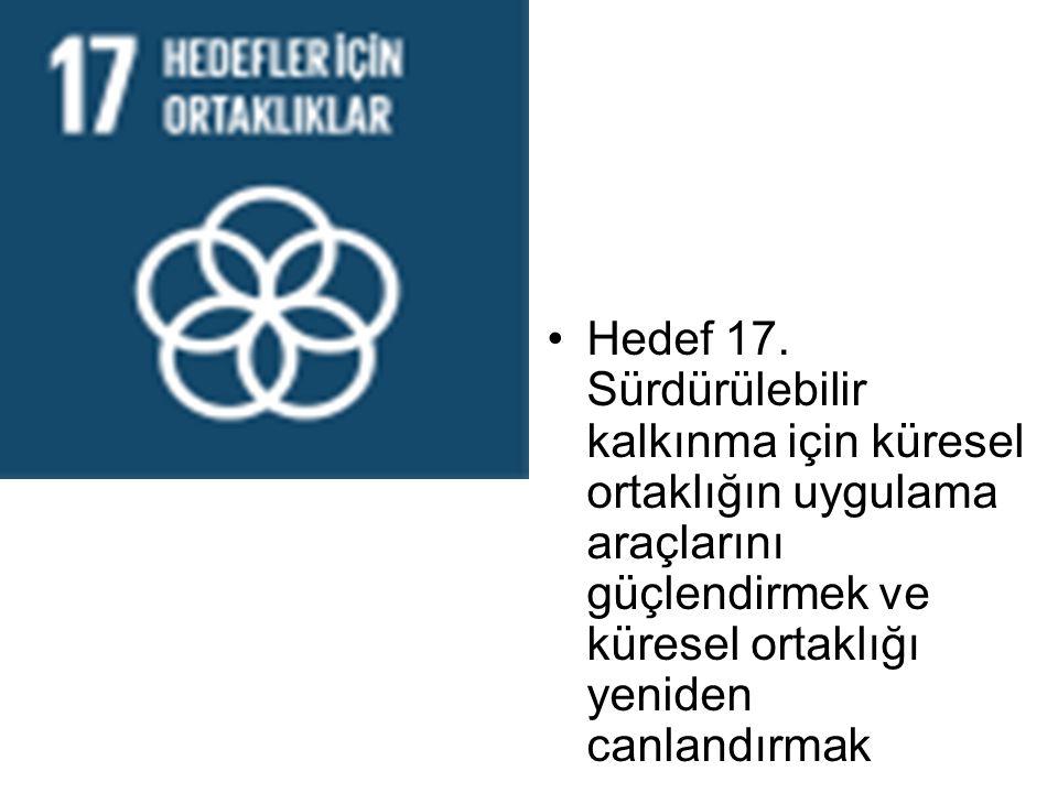 Hedef 17.