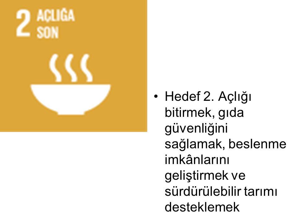Hedef 2.