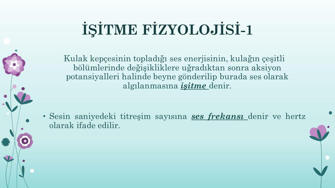 İŞİTME FİZYOLOJİSİ-1