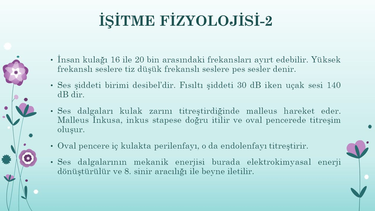 İŞİTME FİZYOLOJİSİ-2