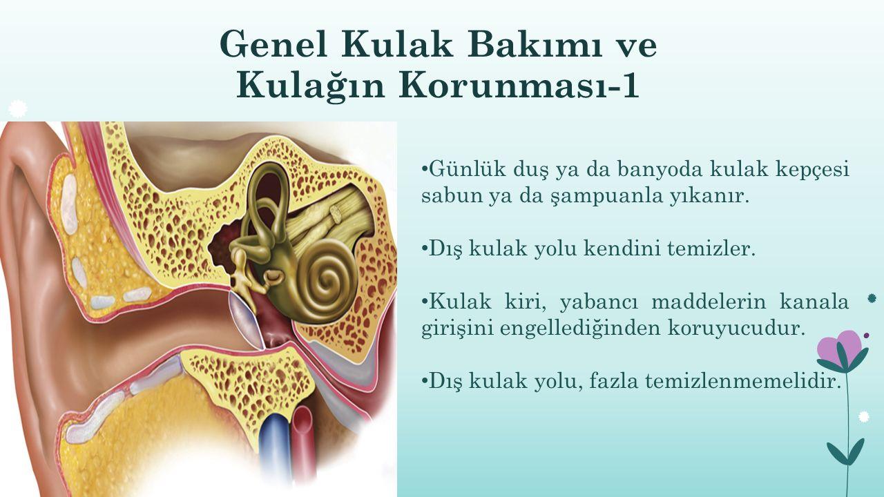 Genel Kulak Bakımı ve Kulağın Korunması-1